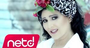 Ayşe Dinçer – Senden Koca Olmazmış Dinle – Video Dinle